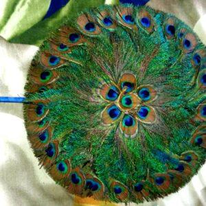 Peacock Feather Fan