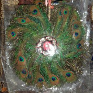 Peacock Feathers Fan